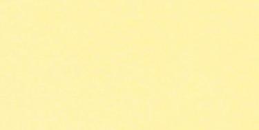 Tall Solids - Lemon Yellow