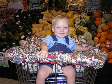 Shopping Cart Cover Pattern-shopping cart cover, shopping cart cover pattern, cart cover, cootie cover, cootie cover pattern