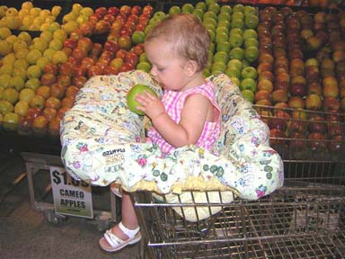 Shopping Cart Cover Pattern