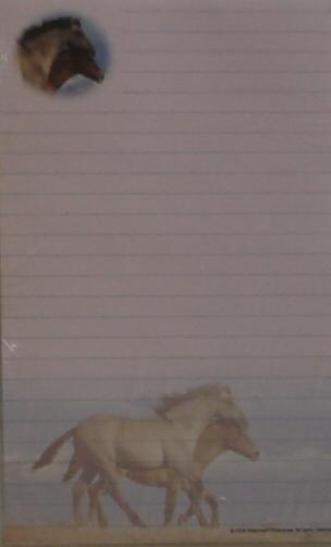 Stationary - Horses