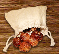 Hand-Sort Select -- Organic Soap Nuts-Hand-Sort Select -- Organic Soap Nuts